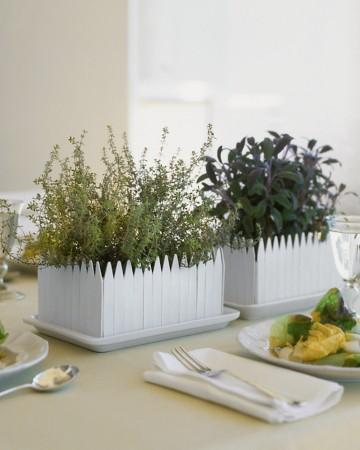 picket-fence herb garden